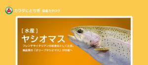 yashio00