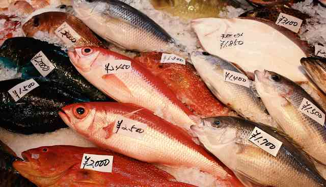 魚市場での魚