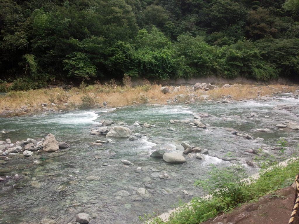 増水している川