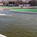 加須はなさき水上公園プールフィッシング詳細【細かすぎる釣り場案内!】