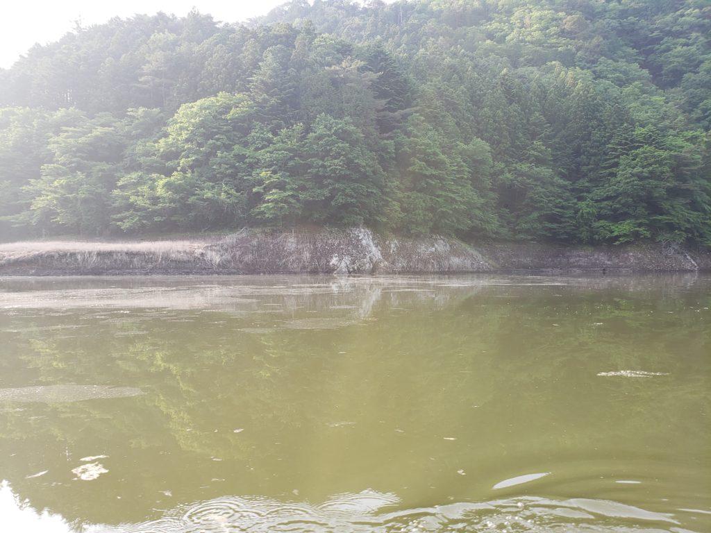 日陰の無い管理釣り場