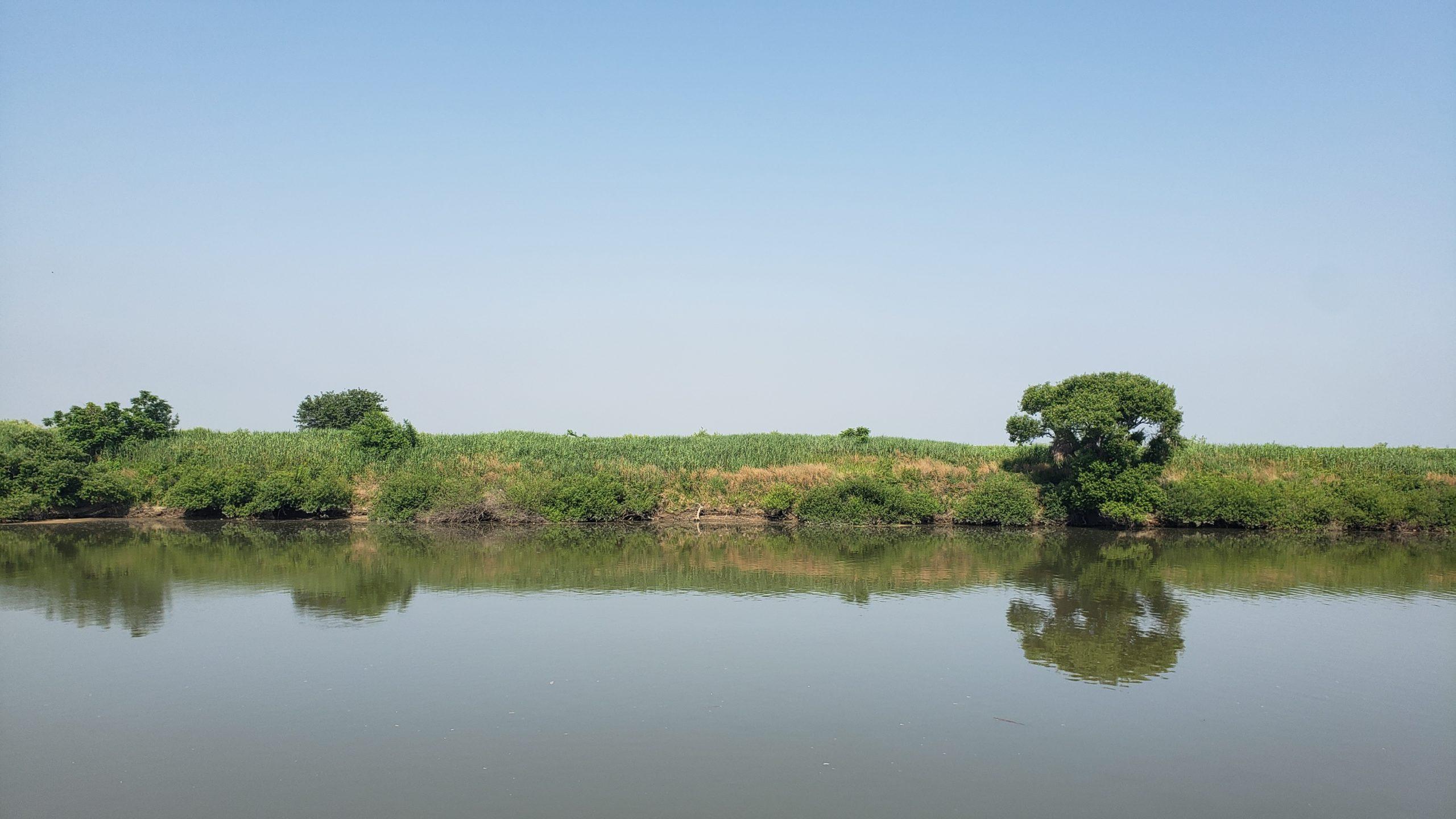 のどかな渡良瀬川